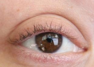 Normal lashes with no mascara